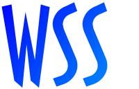 wsslogonei